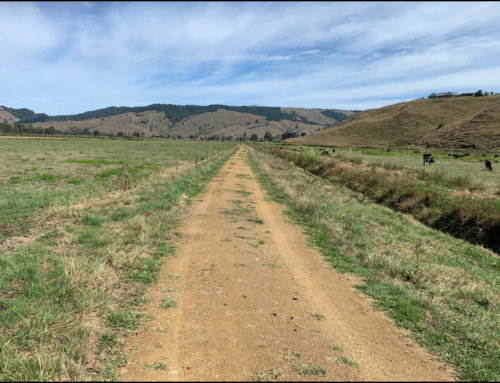 Castle Craig 250Km Enduro – Waitomo 30th March